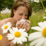 Alergicy – polecamy domenę dla Was