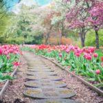 Ładny oraz uporządkowany ogród to zasługa wielu godzin spędzonych  w jego zaciszu w trakcie pielegnacji.